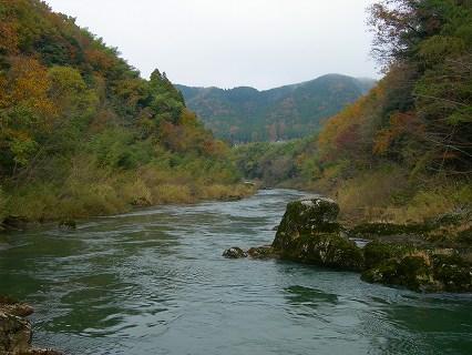 岩の傍から見た由良川