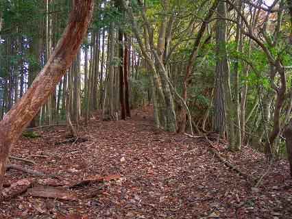 釈丈ケ嶽への道